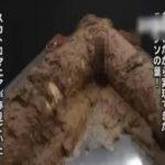 【スカトロ動画】清楚な少女をウンコとゲロ塗れにして犯す糞レイプ!大量の糞で全身コーテイングして大便おはぎの完成…